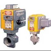 Maxon Gas Electro-Mechanical Valves�